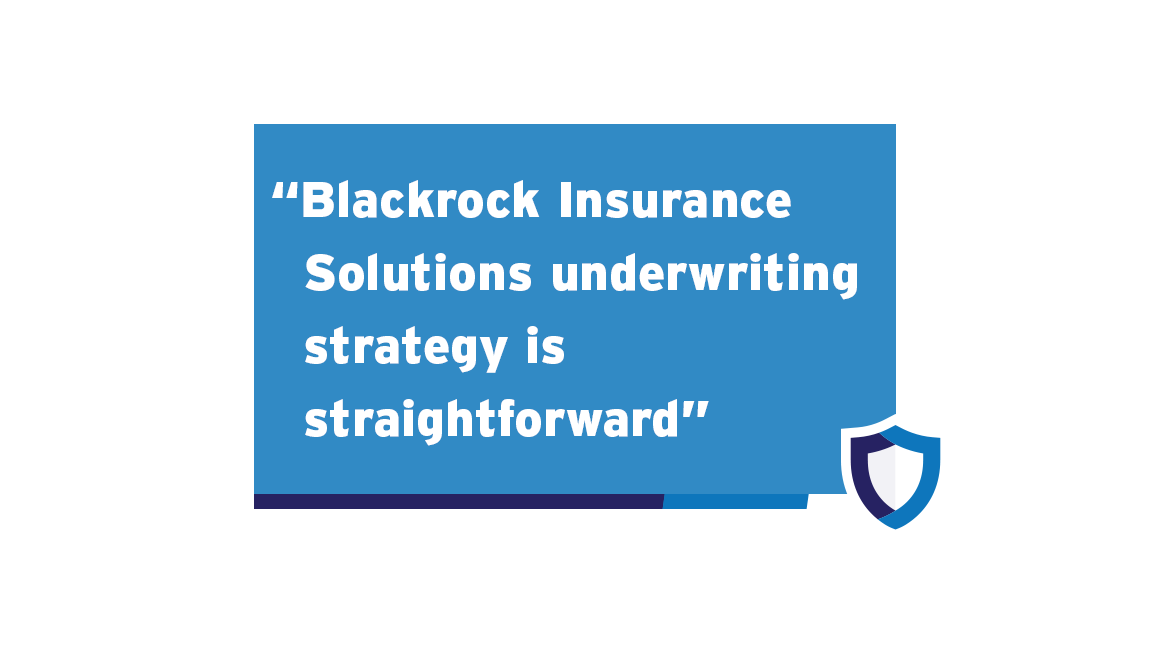 Blackrock Insurance Solutions - Underwriting-Approach-Slider-Frame2